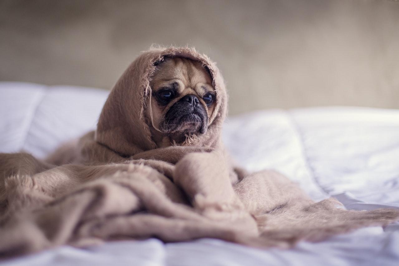 Titelbild: Einschlafprobleme