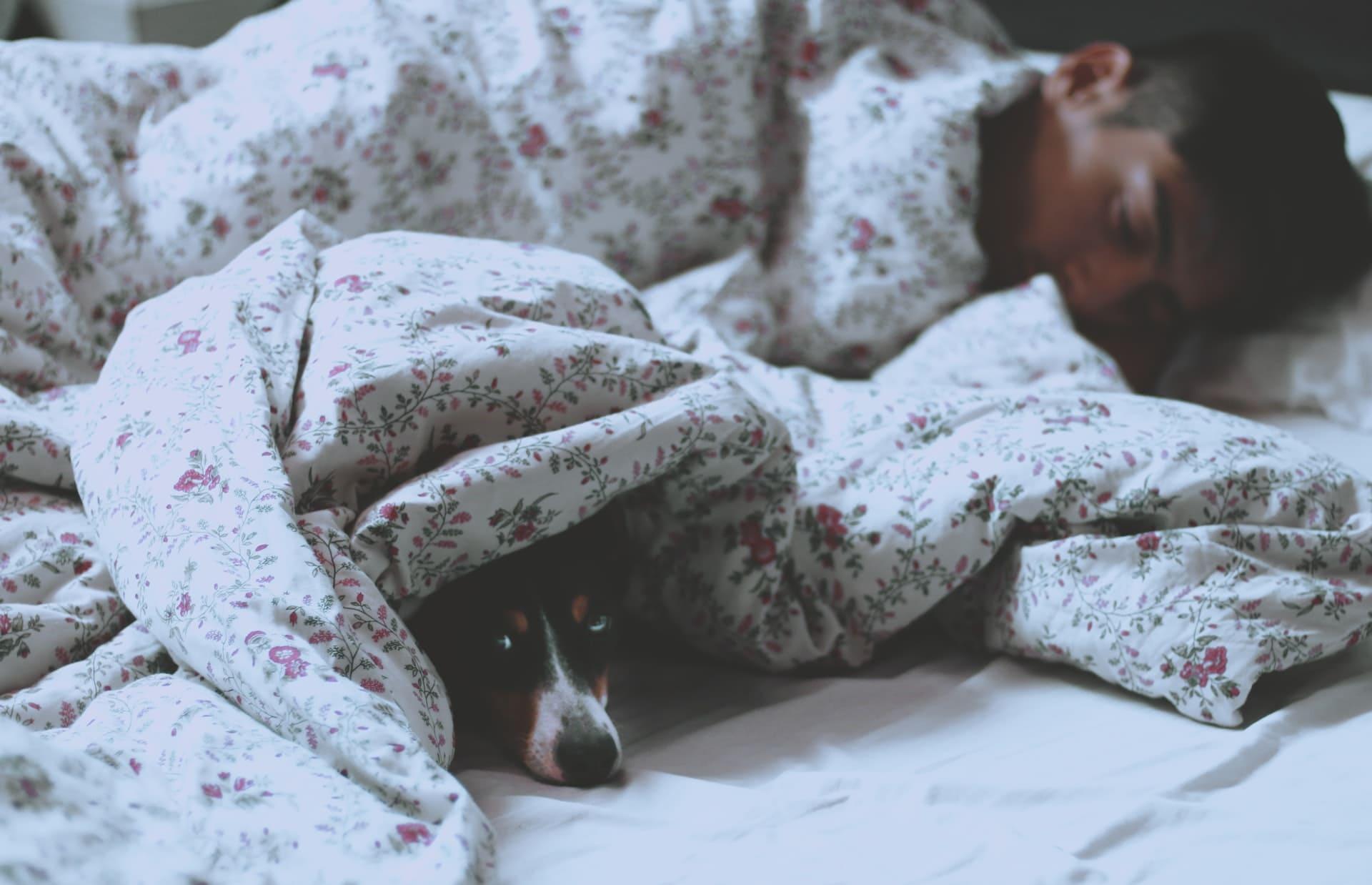 Titelbild: Zusammenhang zwischen Schlafposition und Psychologie